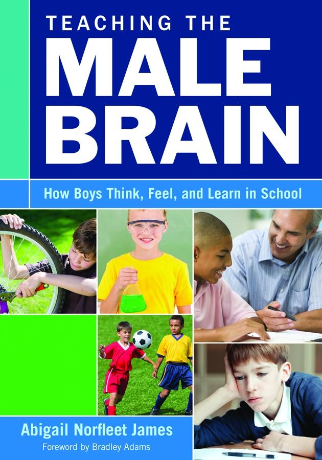 Teaching the Male Brain