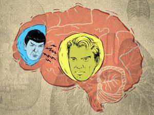 spock vs kirk brain image